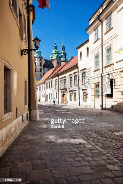 kanonicza st. in krakow - view of the wawel castle - wawel cathedral stock pictures, royalty-free photos & images