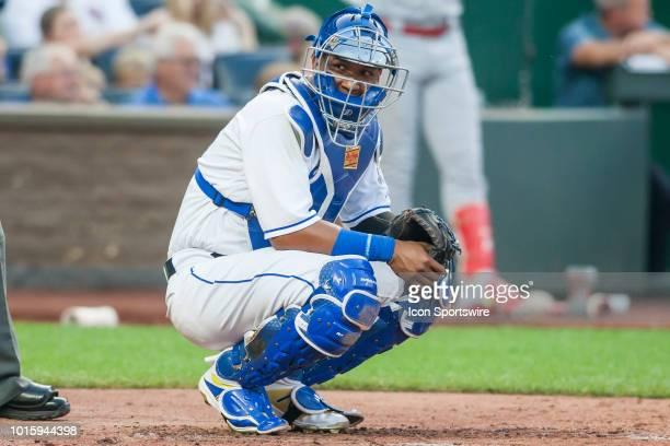Kansas City Royals catcher Salvador Perez looks toward his dugout during the MLB regular season game between the St Louis Cardinals and the Kansas...