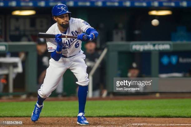Kansas City Royals center fielder Billy Hamilton attempts to lay down a bunt during the home opener game between the Kansas City Royals and the...