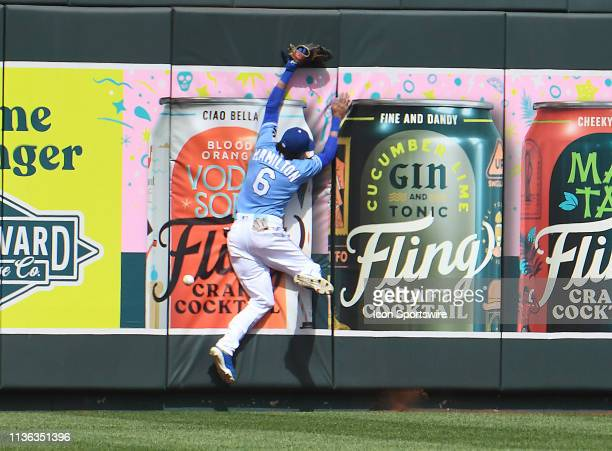 Kansas City Royals center fielder Billy Hamilton can't catch a fly ball in the ninth that tied the game during a Major League Baseball game between...
