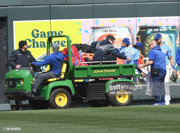 Kansas City Royals center fielder Billy Hamilton is taken off the field after injuring his knee going after a fly ball during a Major League Baseball...
