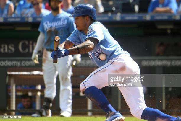 Kansas City Royals shortstop Adalberto Mondesi is out bunting during a MLB game between the Minnesota Twins and the Kansas City Royals on September...