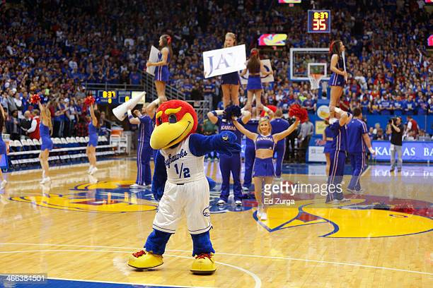 Kansas Jayhawks mascot Baby Jay and cheerleaders performs during a game against the Baylor Bears at Allen Fieldhouse on January 20 2014 in Lawrence...