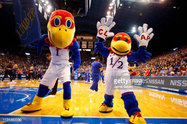 Kansas Jayhawks mascots perform during the game against the Iowa State Cyclones at Allen Fieldhouse on January 21 2019 in Lawrence Kansas