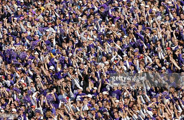 Kansas State Wildcats fans cheer their team as they take a lead on an interception against the Oklahoma Sooners in the third quarter on October 16...