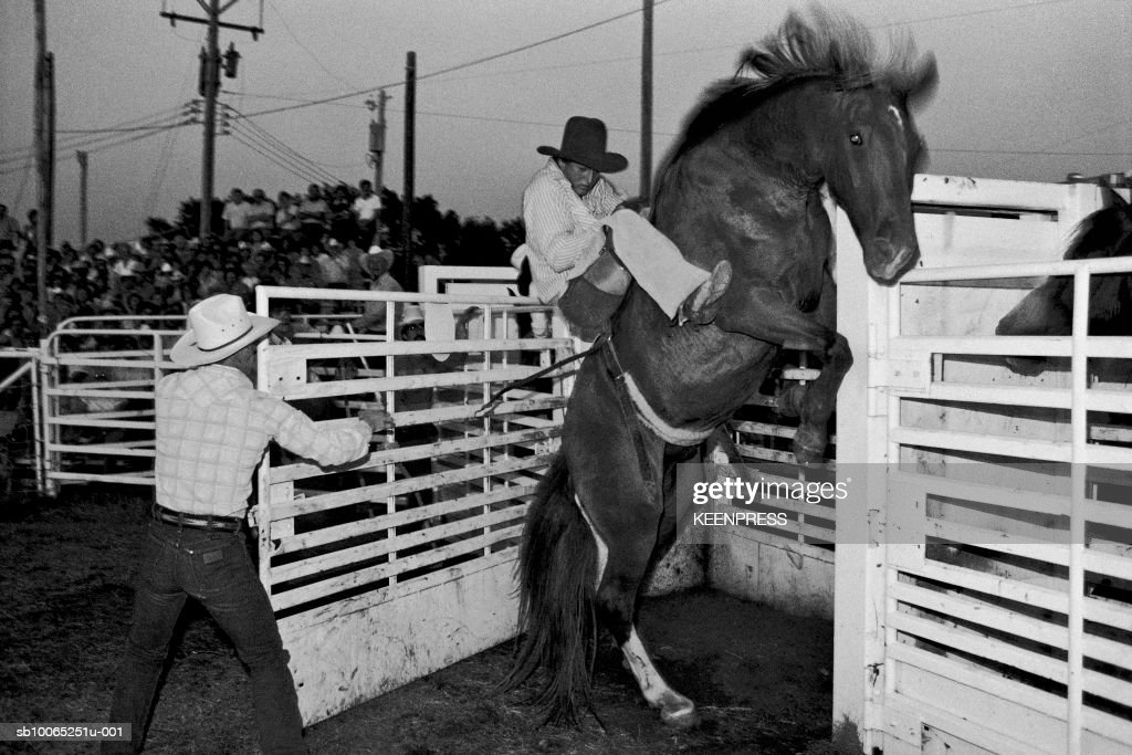 Kansas, USA-Cowboy during a rodeo on a rearing horse.; 1986:01:05