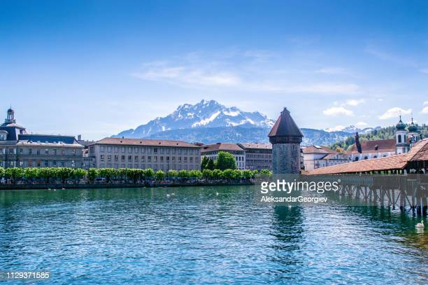 Worlds Best Lucerne Stock Pictures Photos And Images