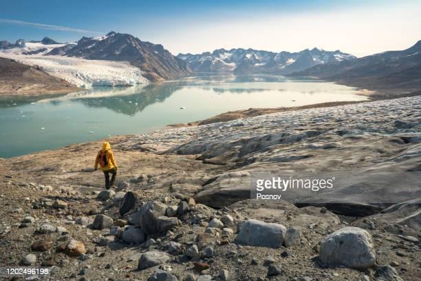 karale glacier - 跟拍鏡頭 個照片及圖片檔