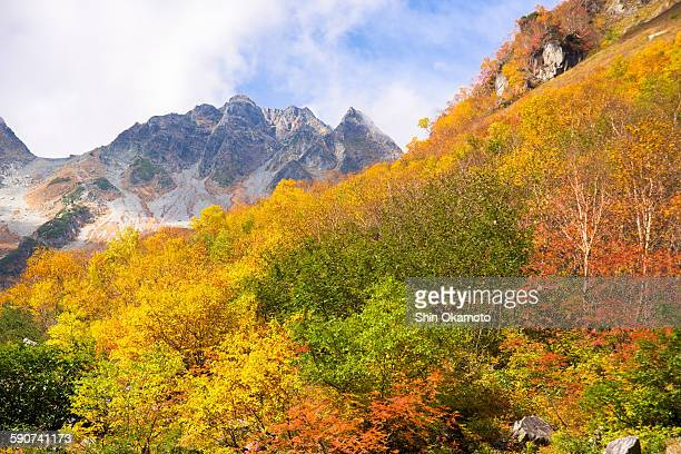 Karasawa Kar, Japanese maple trees with mountain