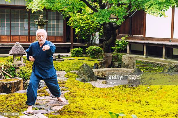 Karate in temple garden