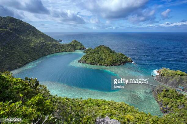 karawapop love shape at misool raja ampat, papua indonesia - papua province indonesia stock pictures, royalty-free photos & images