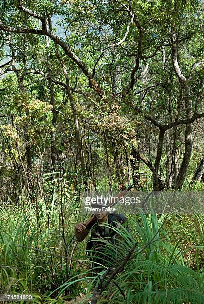 Karen guerillas scout a jungle plateau in Northern Karen State before the passage of a Free Burma Rangers relief expedition For years the Burmese...