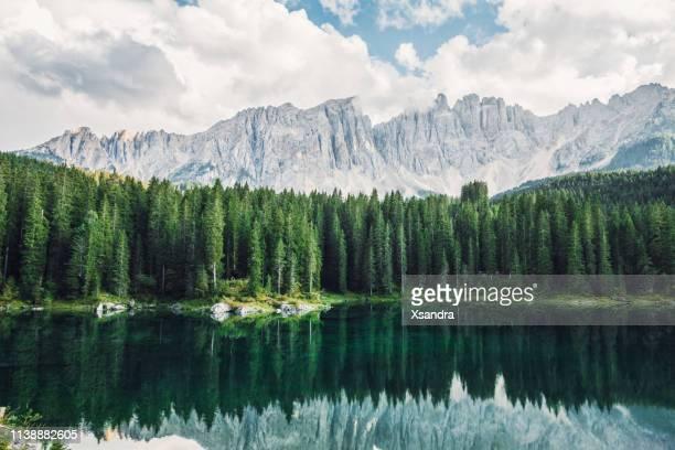 karersee / lago di carezza in south tyrol, italy - pineta foto e immagini stock