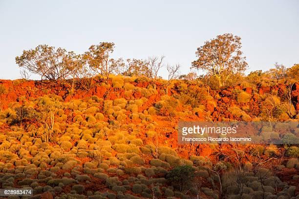 karijini national park, western australia. - francesco riccardo iacomino australia foto e immagini stock