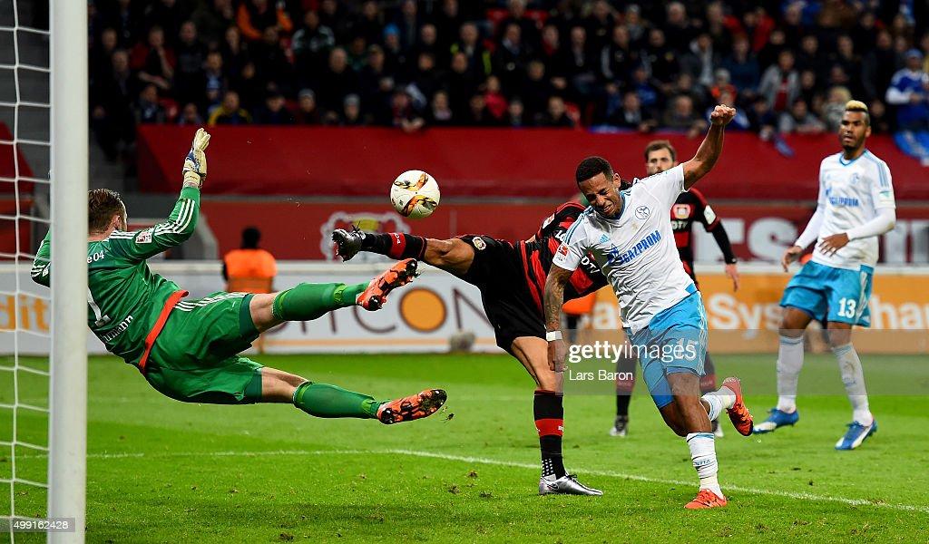 Bayer Leverkusen v FC Schalke 04 - Bundesliga : News Photo