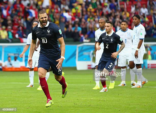 Karim Benzema of France celebrates scoring his team's first goal on a penalty kick during the 2014 FIFA World Cup Brazil Group E match between France...