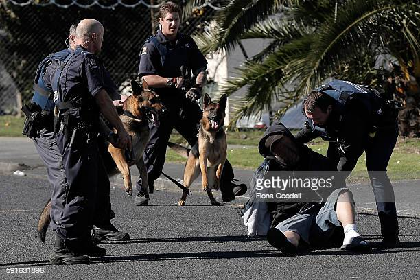 Karl and patrol dog Iso and Andrew and patrol dog Lee work to contain and disarm an offender during an armed offender incident in Takanini on August...