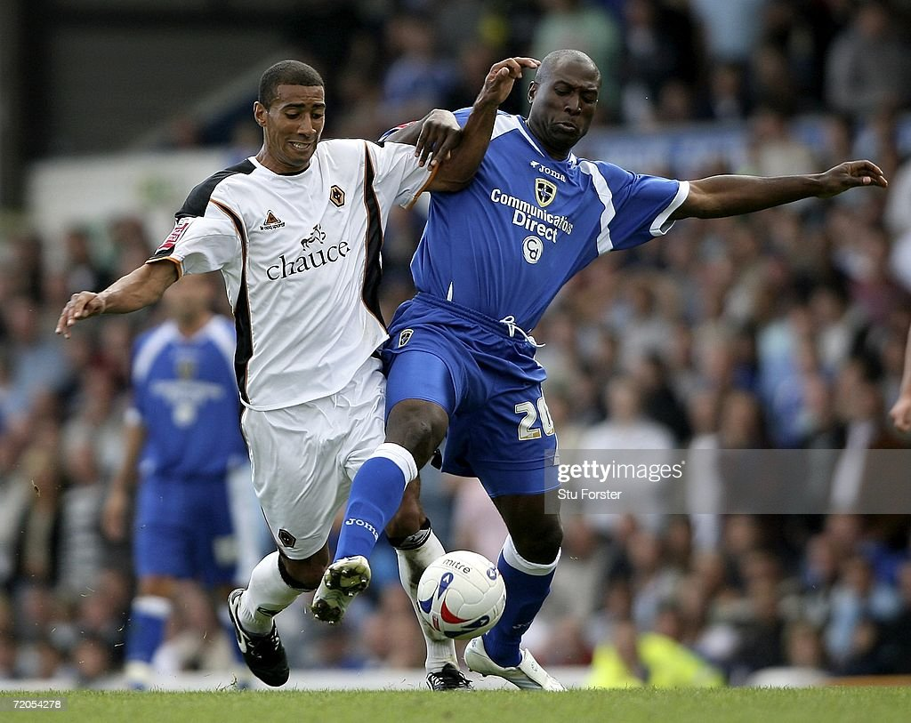 Cardiff City v Wolverhampton Wanderers : News Photo