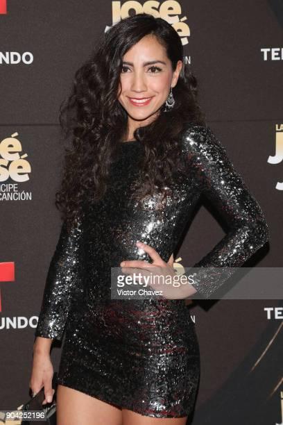 Karla Cruz attends the 'Jose Jose El Principe De La Cancion' Telemundo tv series premiere at Four Seasons hotel on January 11 2018 in Mexico City...