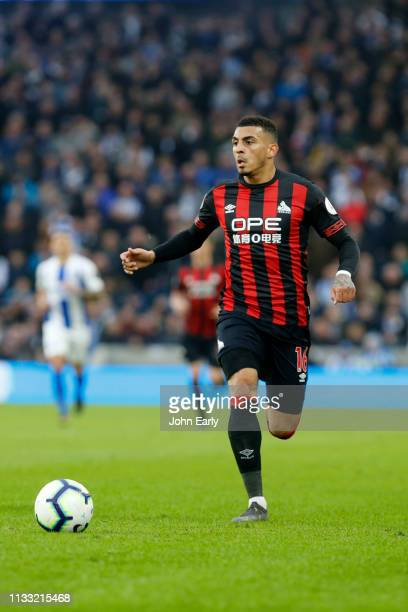 Karlan Grant of Huddersfield Town during the Premier League match between Brighton Hove Albion and Huddersfield Town at American Express Community...