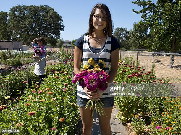 Karly Plarisan holds freshlycut zinnias at Verbena Flowers and Trimmings in Roseville Calif on July 1 2014 Along with her mother Karen they cut out...