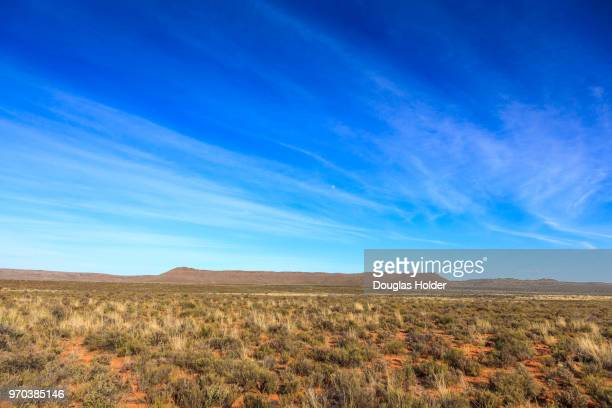 karoo, northern cape - the karoo stock pictures, royalty-free photos & images
