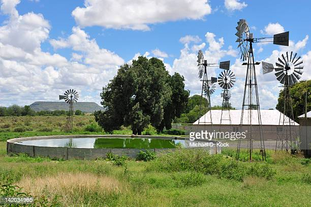 karoo sheep farm, windmills and storage reservoir, karoo, south africa - the karoo stock photos and pictures