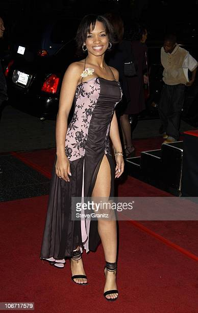 Karrine Steffans during A Man Apart Premiere at Mann's Chinese in Hollywood California United States
