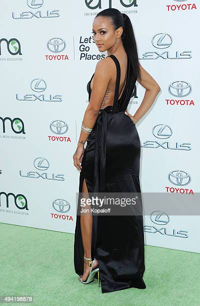 Karrueche Tran arrives at Environmental Media Association Hosts Its 25th Annual EMA Awards Presented By Toyota And Lexus at Warner Bros Studios on...