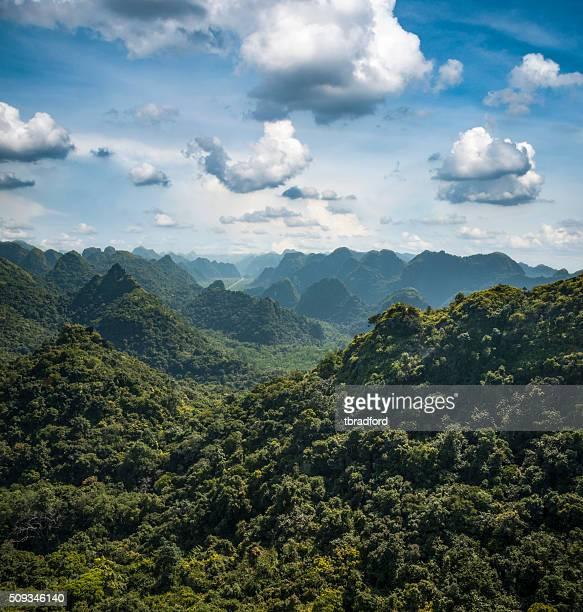 Karst Landschaft auf der Insel Cat Ba In der Halong-Bucht, Vietnam