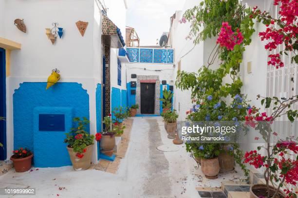 kasbah des oudaia (kasbah of the udayas) narrow streets, rabat, morocco - ラバト ストックフォトと画像