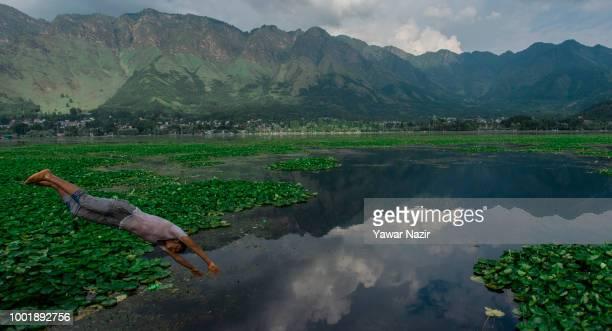 Kashmir boy dives into Dal lake on July 19 2018 in Srinagar the summer capital of Indian administered Kashmir India Kashmir the Muslim majority state...