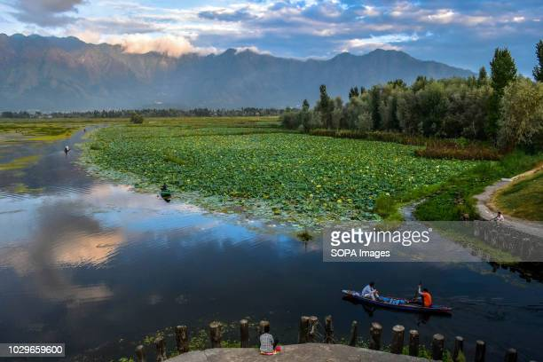 Kashmiri boatman seen ferrying locals in his traditional boat during sunset at the Nigeen Lake in Srinagar Indian administered Kashmir Kashmir is the...