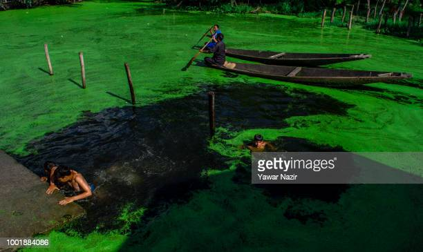 Kashmiri children bathe as vendors row their boats on Dal lake on July 19 2018 in Srinagar the summer capital of Indian administered Kashmir India...