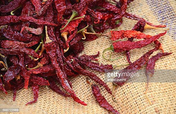 Kashmiri dried red chillies - Indian spice