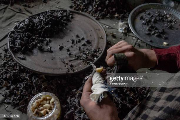 Kashmiri family including children wearing protective rubber all over their fingers moves a special knife tactfully over the chestnuts extract water...
