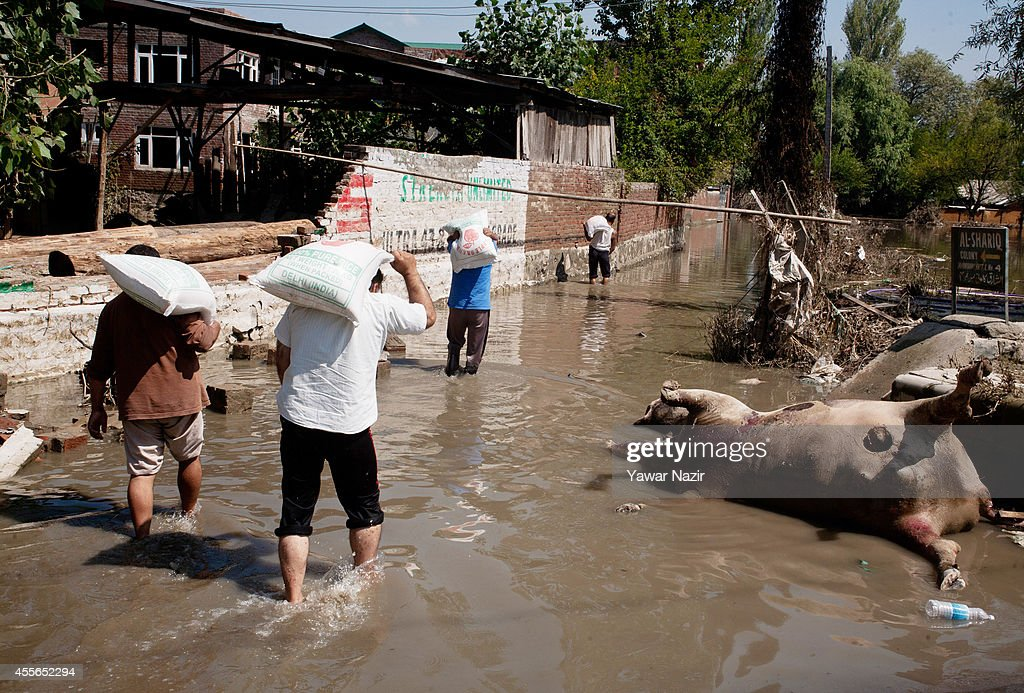 Kashmiri flood victims carrying food sacks walk on a submerged road in a cow carcass on September 18, 2014 in Srinagar, the summer capital of Indian administered Kashmir, India. Nearly 100,000 people are still marooned in the areas of the Kashmir Valley submerged in flood waters. The floods in the Himalayan region of Kashmir were believed to be the worst in decades with over 200 dead. Health experts are worried the stagnant waters and floating carcasses of livestock could create conditions for serious outbreaks of disease.