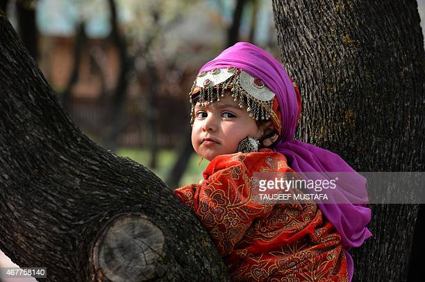 A Kashmiri girl wears traditional dress as she poses amidst the blossoming almond orchards a sign of the arrival of spring after a long spell of...