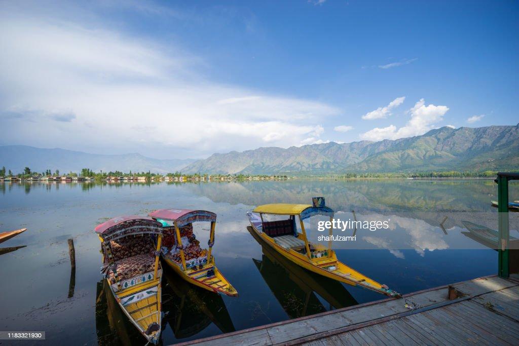 A Kashmiri man paddling a shikara (traditional boat) on Dal Lake of Kashmir, India. : Stock Photo