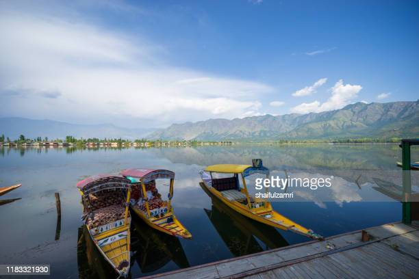 a kashmiri man paddling a shikara (traditional boat) on dal lake of kashmir, india. - shaifulzamri foto e immagini stock