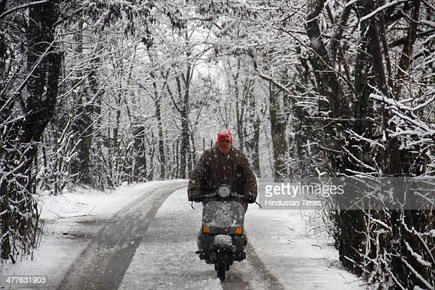 Kashmiri man rides scooter through a snow covered road and trees on the outskirts of on March 10 2014 in Srinagar India Kashmir Valley including...