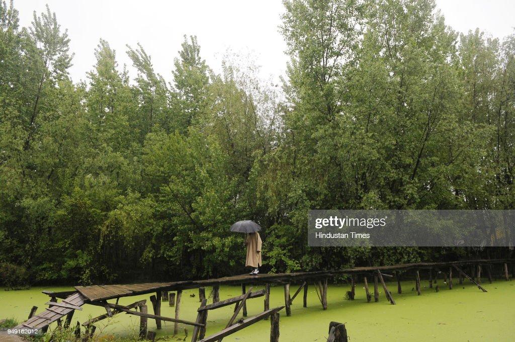 Rain In Kashmir Valley