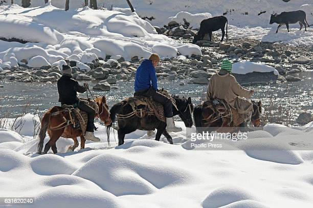 Kashmiri Muslim horse riders trying to cross stream in Central Kashmirs Kangan area in Indian Controlled Kashmir Cold wave has gripped Valley since...