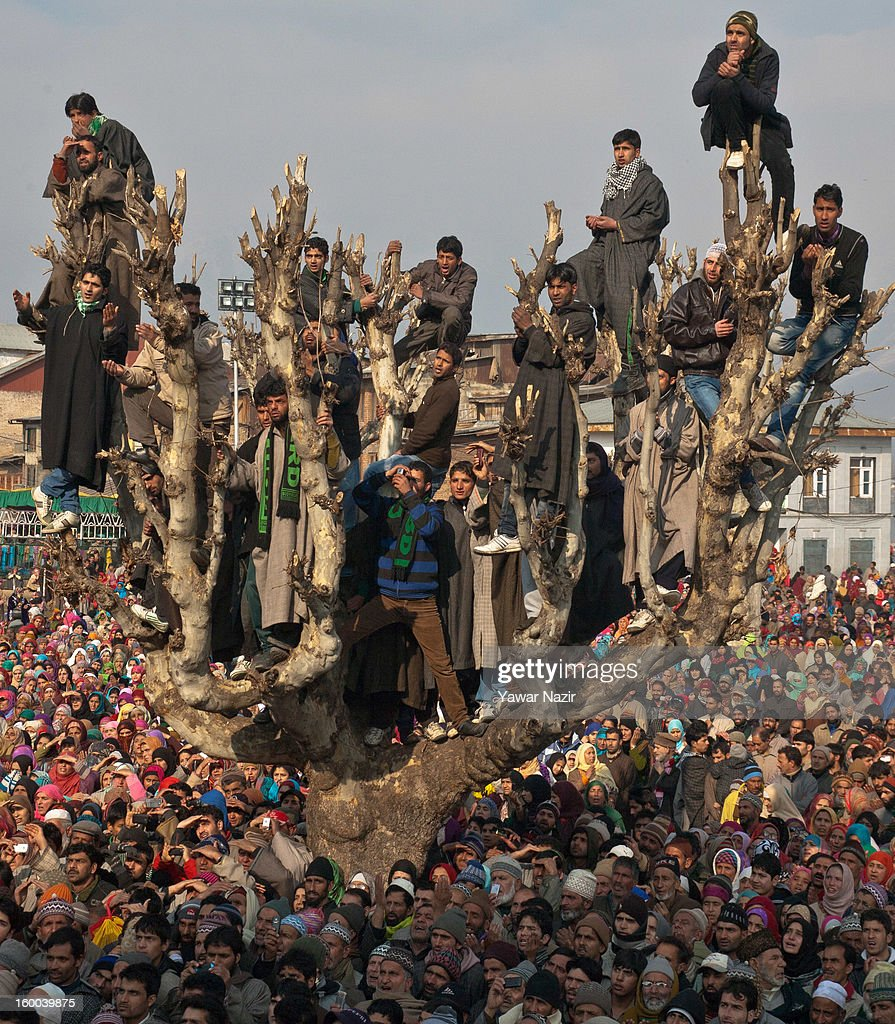 Kashmiri Muslims on top of a tree look towards a cleric (not seen in the picture) displaying the holy relic believed to be the hair from the beard of the Prophet Mohammed at Hazratbal shrine during Eid-e-Milad, the anniversary of the birth of the Prophet Mohammed January 25, 2013 in Srinagar, the summer capital of Indian administered Kashmir, India. Thousands of Muslims from different parts of Kashmir will visit the Hazratbal shrine in Srinagar to pay obeisance on the occasion of Eid-e-Milad. The shrine is highly revered by Kashmiri Muslims as it is believed to house a holy relic of the Prophet Mohammed. The relic is displayed to the devotees on important Islamic days such as the Eid- Milad when Muslims worldwide celebrate the Prophet Mohammed.