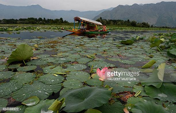 Kashmiri Muslims row a boat near a Lotus flower in bloom on Dal Lake in Srinagar on September 1 2014 Kashmir is divided between nucleararmed rivals...