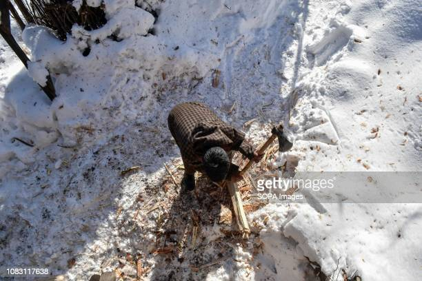 Kashmiri nomad seen choping firewood with an axe during a sunny winter day in Ganderbal about 50kms from Srinagar Indian administered Kashmir The...