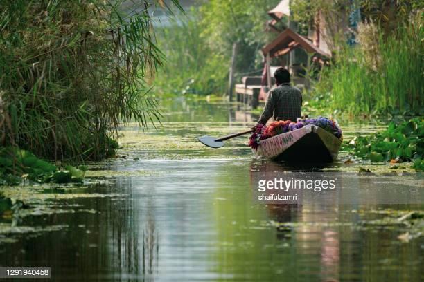 kashmiri people paddle a shikara (traditional wooden boat) at dal lake of kashmir - shaifulzamri stock pictures, royalty-free photos & images