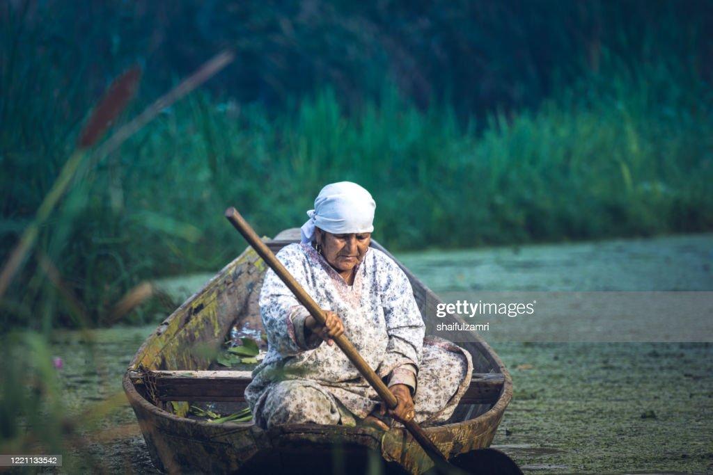Kashmiri people paddle a shikara (traditional wooden boat) at Dal Lake : Stock Photo