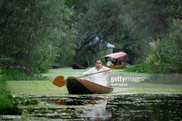 a kashmiri people paddling a shikara (traditional boat) on dal lake of kashmir, india. since 1947 the ownership of kashmir has been disputed between pakistan and india. - shaifulzamri foto e immagini stock
