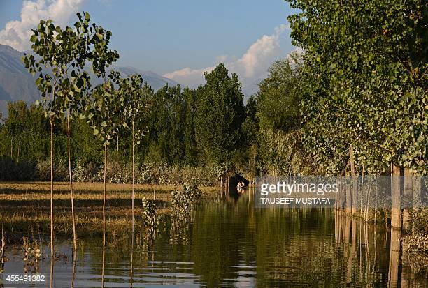 Kashmiri residents paddle a boat through floodwaters in Rakshalana south of Srinagar on September 15 2014 Rescuers struggled to reach more than...